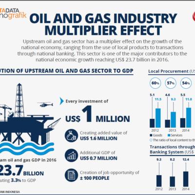 Infographic Indonesia 2017